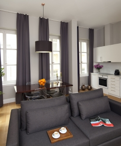 Deluxe Flat with City View 2